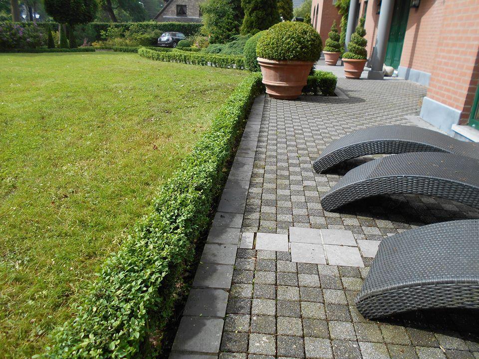 Entretien jardin neupr soliverdi espace vert for Entretien jardin