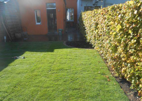 Réaménagement de deux petit jardin voisin à Angleur