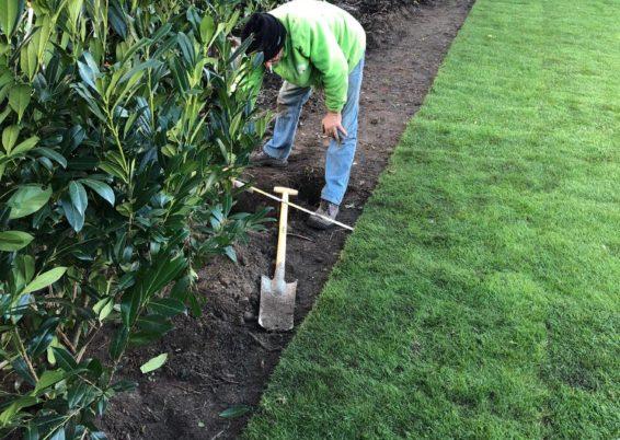Réfection complète d'un jardin à Haneffe