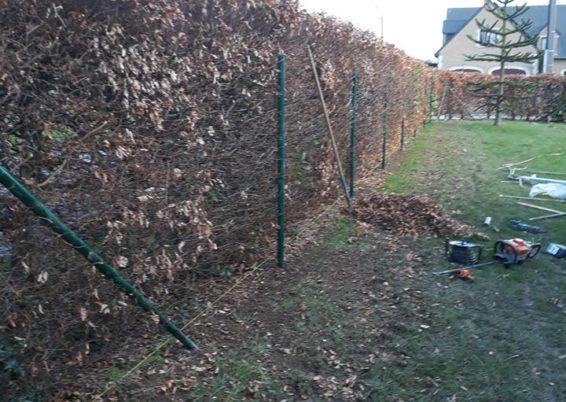Sécurisation d'un jardin avec la pose d'une clôture souple