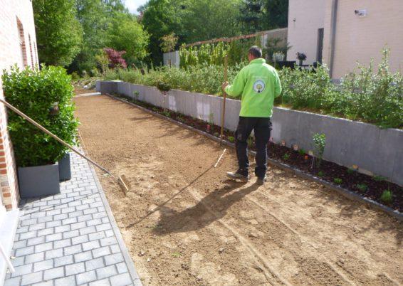 Réalisation d'un semis de pelouse à Neupré