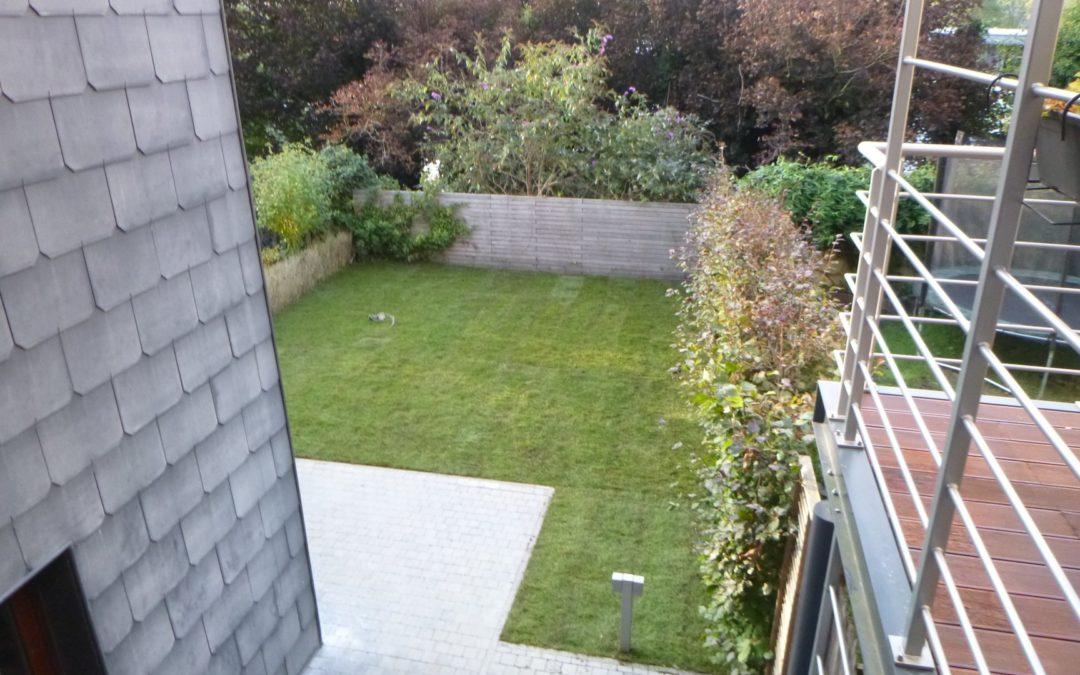 Réaménagement d'un petit jardin à Liège