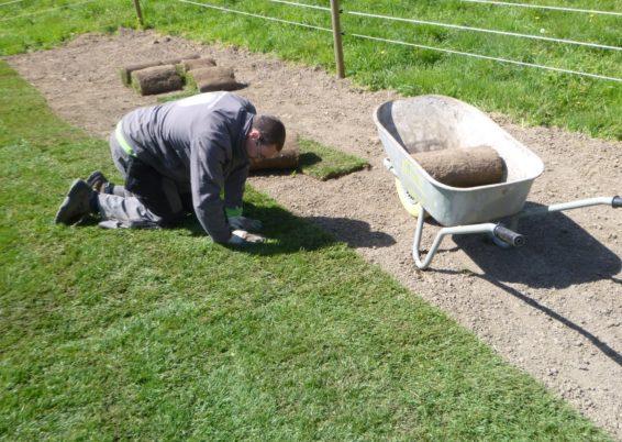 Réalisation de pelouse en rouleaux à Juprelle