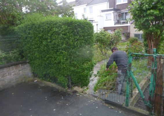 Aménagement d'un petit jardin à Angleur